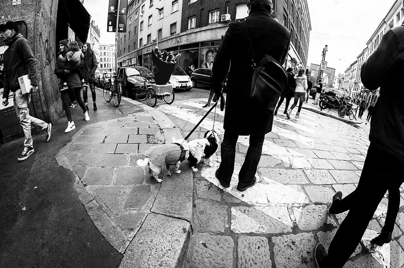 MILUNA-Ewa-Milun-Walczak-Mediolan-ludzie-ulica-przechodzni-mediolanczycy-Przechodnie-15