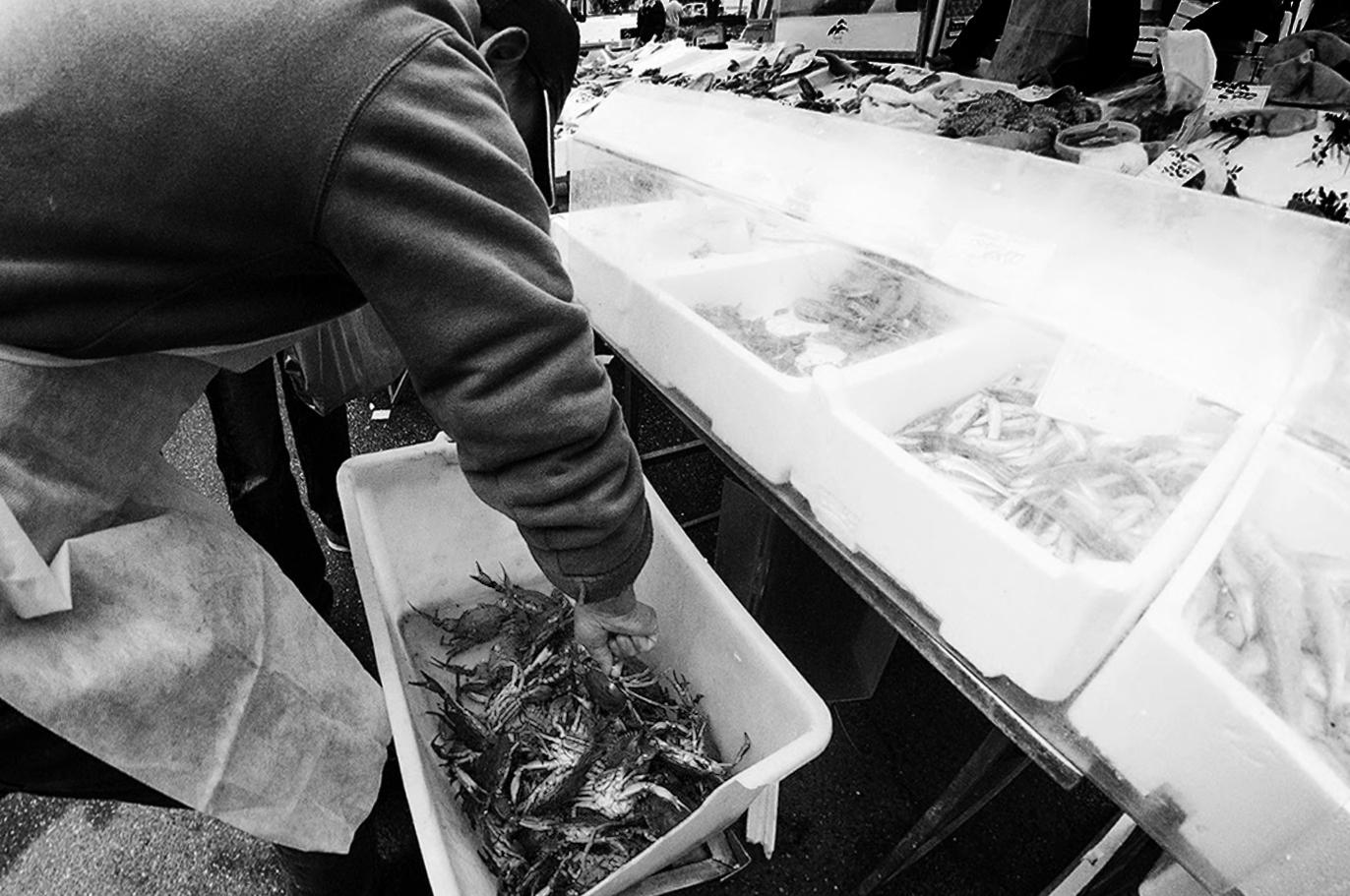 MILUNA-Ewa-Milun-Walczak-Na-Straganie-W-Dzien-targowy-Mediolan-Wlochy-bazar-targ-warzywa-ludzie-tlumy-reportaz-zakupy-3