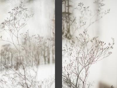 2969Dla królowej śniegu