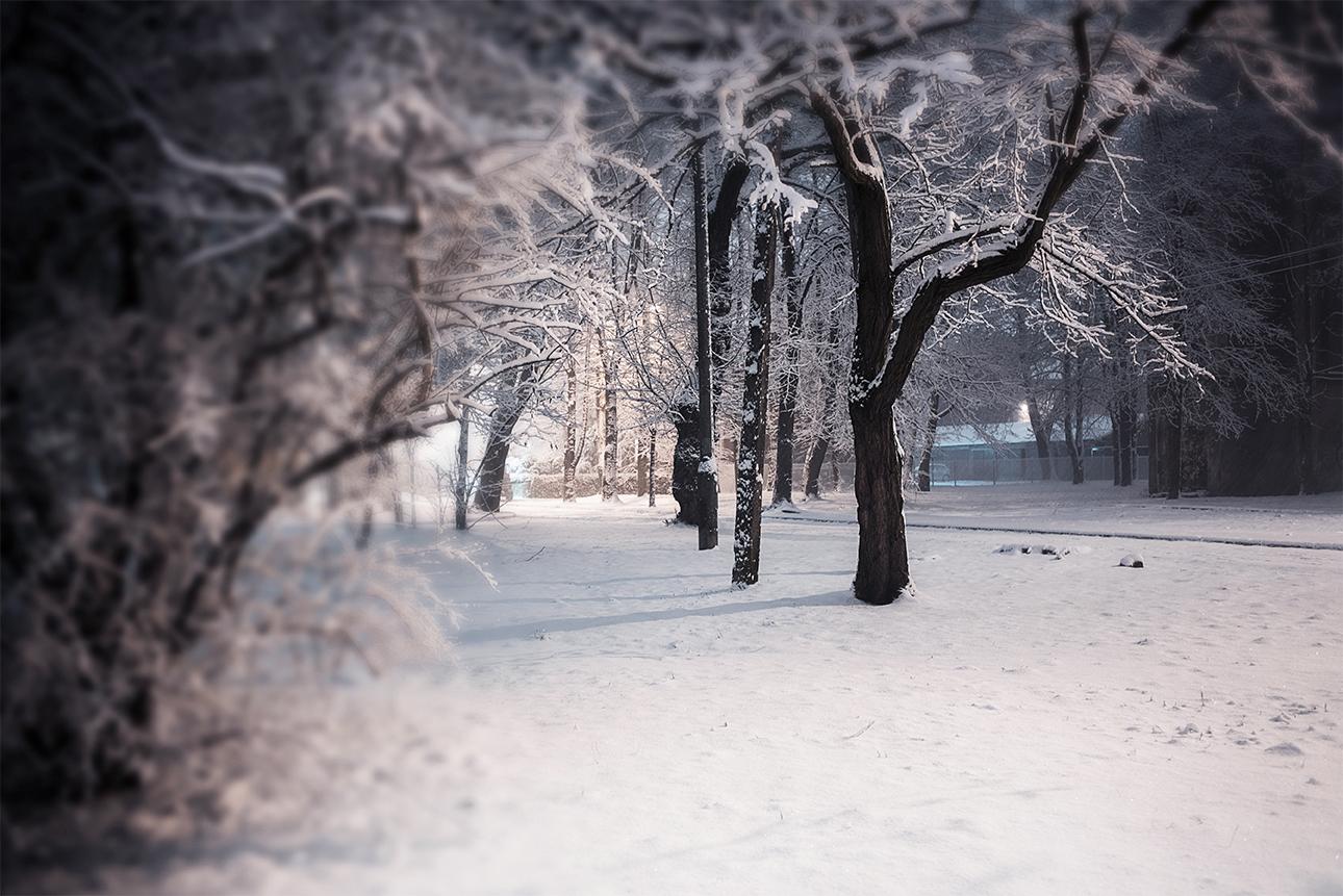 MILUNA-Ewa-Milun-Walczak-Zima-snieg-Piastow-plener-opady-biel-magia-zimy-zimno-chlod-piekno-Pod-pierzyna-8