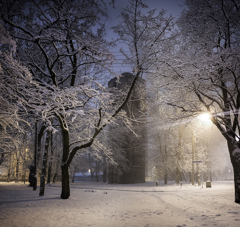 MILUNA-Ewa-Milun-Walczak-Zima-snieg-Piastow-plener-opady-biel-magia-zimy-zimno-chlod-piekno-Pod-pierzyna-9